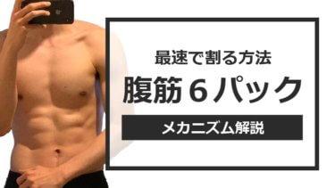 腹筋6パックの作り方を解説【腹筋は誰でも割れている】