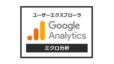 【Googleアナリティクス】ブログ初心者こそ「ミクロ分析」をするべし